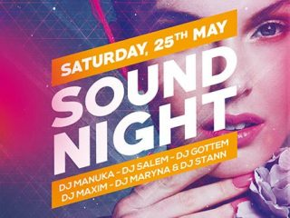 Sound Night Party Free Flyer and Poster Template