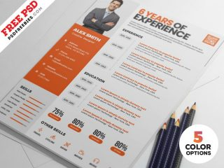 Free Clean Resume Design Templates PSD